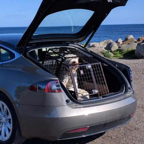 Tesla S Medium hundbur - Design Hanseburen.